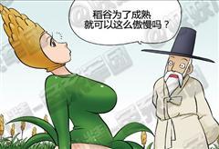 【手機交友軟體推薦】色系軍團系列漫畫之培養稻谷
