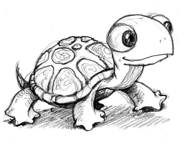 【手機聯誼軟體推薦】天上的烏龜