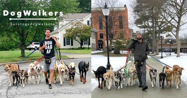 【手機交友APP推薦】超神「代客遛狗」服務,20隻狗狗燦笑大合照,每天都嗨到像是校外教學!