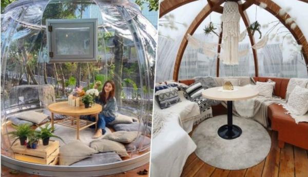 【手機交友APP推薦】免出國就在台灣!IG狂洗版的美照新地標!『森林系玻璃泡泡屋』餐廳、超可愛球型包廂,趁假日衝一波吧!