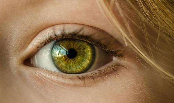 【手機交友APP推薦】AI跨足醫學領域!未來有望成為青光眼患者的救星