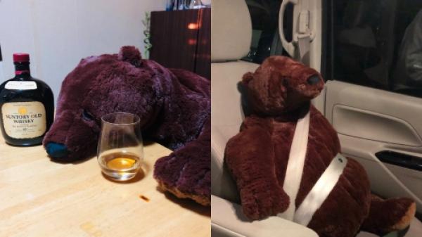 【手機交友APP推薦】《慵懶的IKEA熊熊》頹廢懶散模樣萌爆網友!就像是下班後的你和我!
