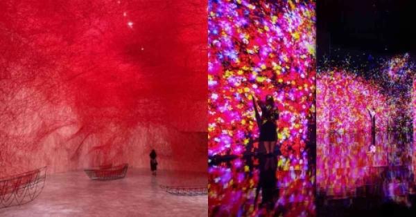 【手機交友APP推薦】《塩田千春》展覽台北站延長到10月!2021下半年最重磅《teamLab未來遊樂園》10月開展!